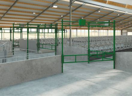 autolift gates for easy cow traffic