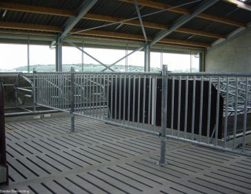 Fixed partition barrier for young stock